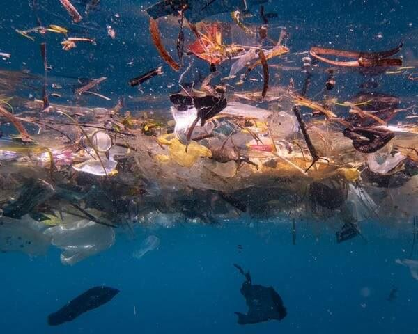 Up to 14 million tonnes of microplastics lie on the seafloor