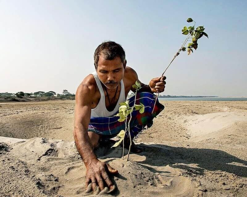 The Forest Man of India has planted 40 million trees
